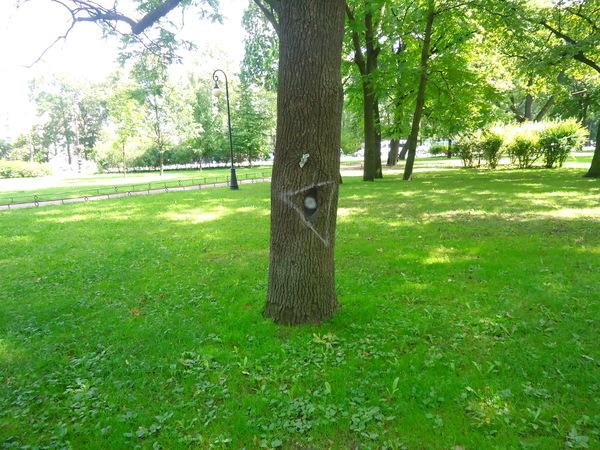 В парке у Петропавловки