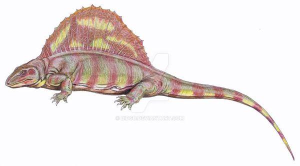 Lupeosaurus Chordata, Synapsida, Eupelycosauria, Edaphosauridae, Lupeosaurus, Пермь, Палеонтология, Extinct_animals