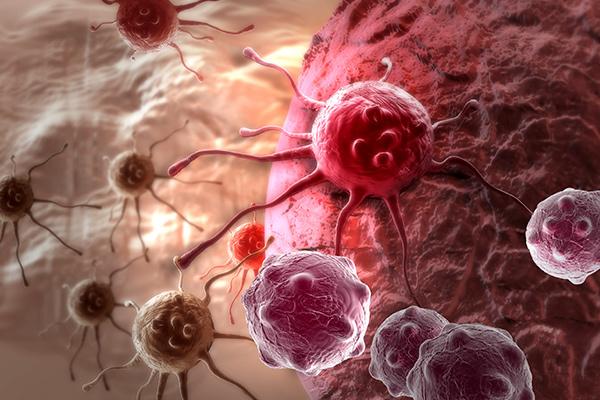 Ученые взломали код раковой опухоли Лента, Рак, Днк, Иммунитет, Длиннопост