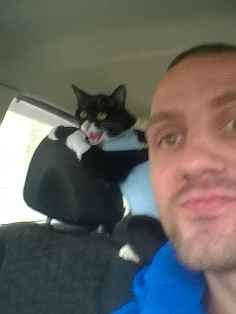 Едем с котейкой с ветеринарки))) кот, явно недоволен, моё