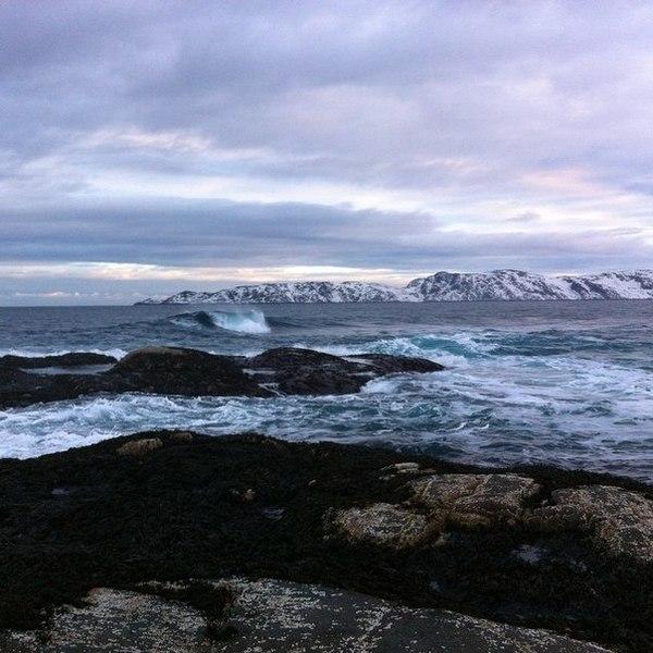 Баренцево море Терибека, Баренцево море, Кайт, Кайтсерфинг, Север, Россия, Фото, Фотография, Длиннопост