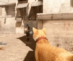 Cat Strike: Source