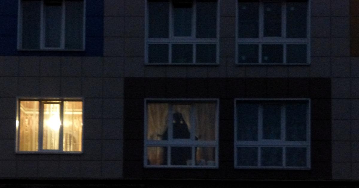 картинки призраков в окне стал фанатом