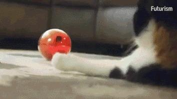 Умный мяч с управлением через телефон