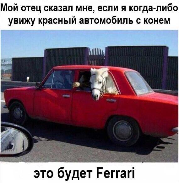 1461959074161378686.jpg
