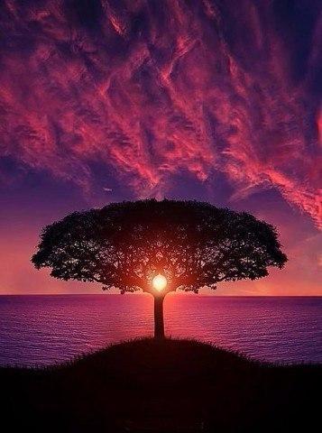 закат картинки красивые