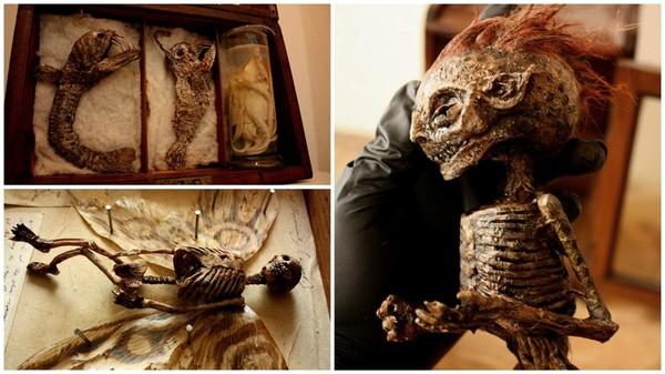 В подвале старого лондонского особняка нашли тела странных существ Интересное, Лондон, Непознанное, Томас Мерлин, Длиннопост