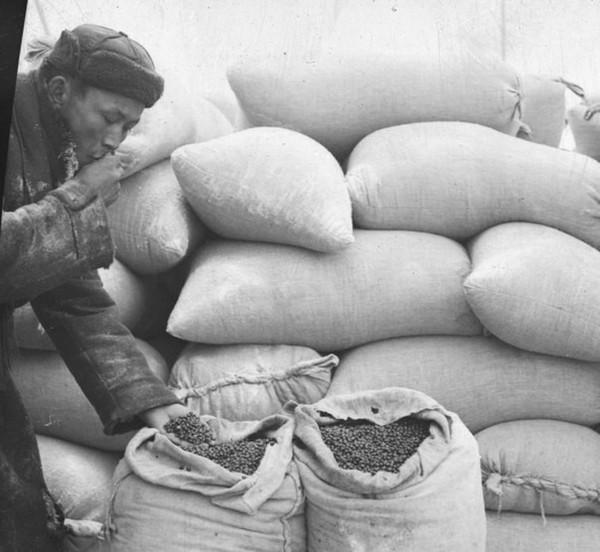 Помощь тувы в ВОВ Помощь, Тува, Война, длиннопост