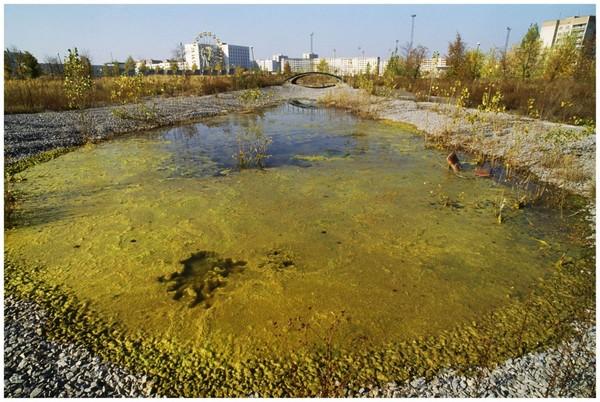 Чернобыль - внутри Саркофага. саркофаг, чернобыль, фотограф, радиация, длиннопост