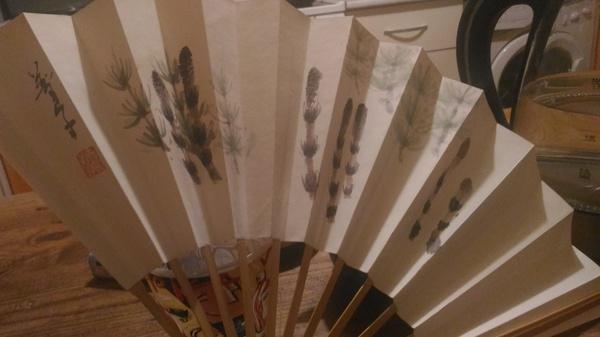 Котейка и веер. Кот, Веер, Япония, Ночь музеев, Длиннопост