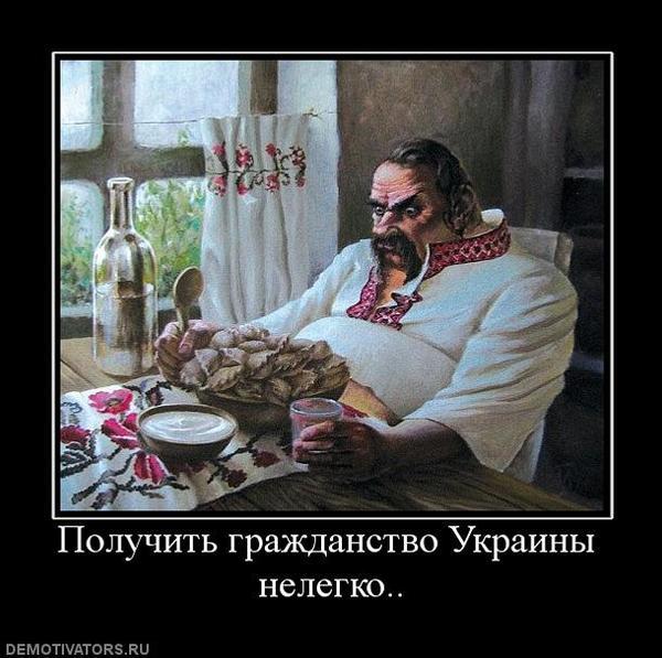Топ идиотских петиций президенту Украины Украина, Политика, Петиция, Длиннопост