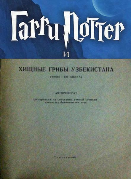 https://cs8.pikabu.ru/post_img/2016/05/13/1/1463094955178154460.jpg