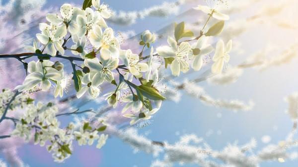 Мультфильм для поднятия настроения... Весна, Город, Жизнь
