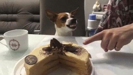 Гифка член торт