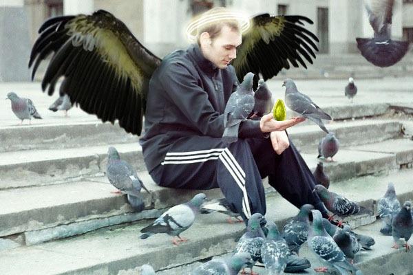 У каждого свой ангел... реинкарнация, голубь, ангел, гопники
