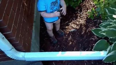 Папа, я лягушку нашел!