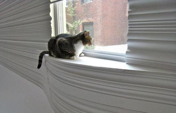 bad cat leash attenuator