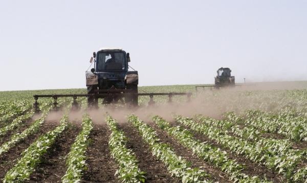 Сельское хозяйство сельское хозяйство, Помощь, диплом, лига помощи