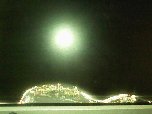 Кошачье творчество Кот, Сволочь, Монитор, Ночной город, Выгоню жить в коридор