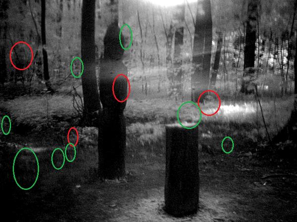 Моя попытка сфотографировать привидение. Привидение, мистика, паранормальное, фотография, кладбище, ультрафиолет, инфракрасный, длиннопост