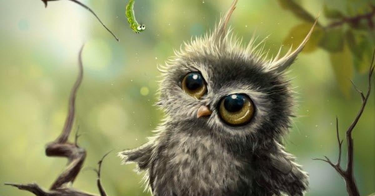 оплетён густой смешная симпатичная взъерошенная сова картинка центр