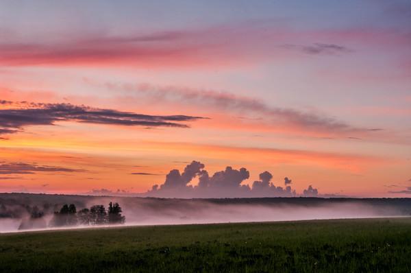 Туманный закат. Россия, Лес, Природа, Закат, Небо, Тульская область