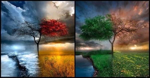 Работа мозга Мозг, Времена года, Весна, Осень, Ученые установили