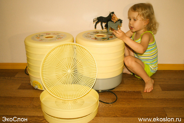 Изображение - Как организовать в домашних условиях производство иван-чая 1464944611124488353