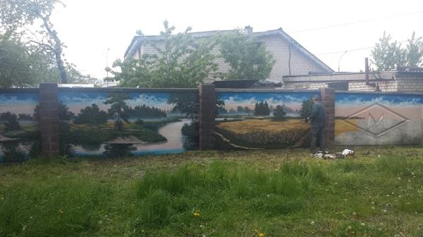 Забор в частном секторе в центре Минска Граффити, Минск, Природа, Частный дом, Samsung galaxy s4