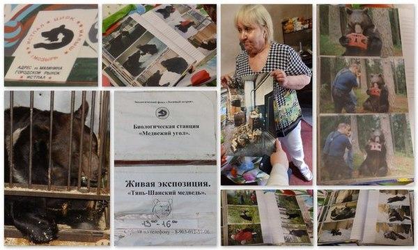 Лосиноостровский Малыш Медведь, Помощь, Благотворительность, Москва, Длиннопост