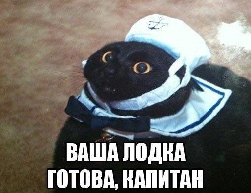 Способ остановить «утечку мозгов» из России Капитан очевидность, Кудрин, Политика