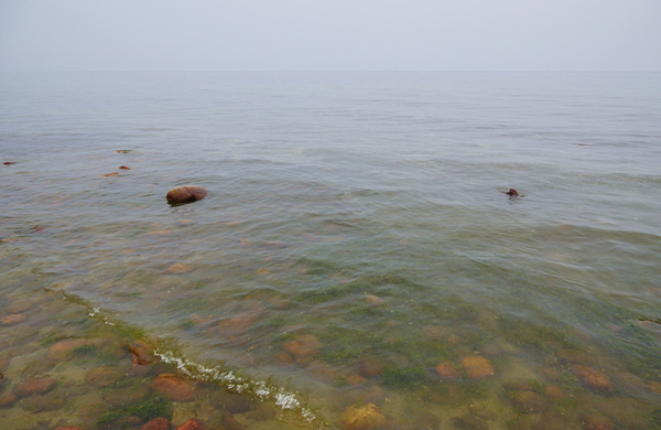 Байкал превращается в болото Байкал, БЦБК, Длиннопост