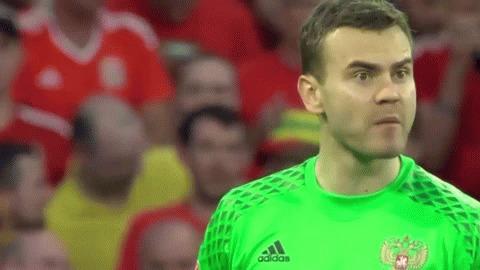Чем запомнился матч Россия-Уэльс (Лавров одобряет)