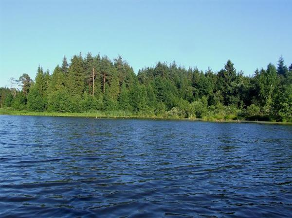 Озеро Святовское Озеро, Легенда, Предположение, Метеорит, Поход, Лес, Текст, Фото, Длиннопост