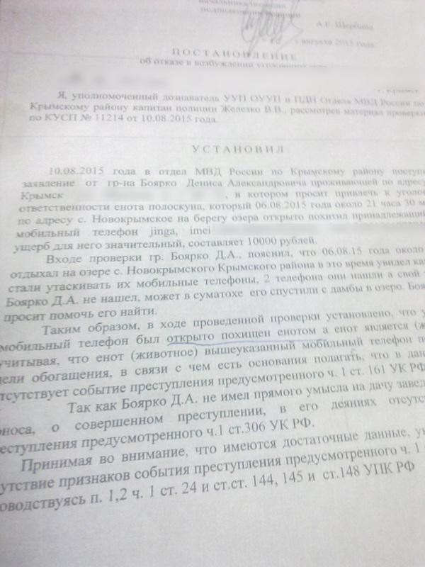 Кража без цели обогащения  Кража без цели обогащения Енот кража полиция длиннопост