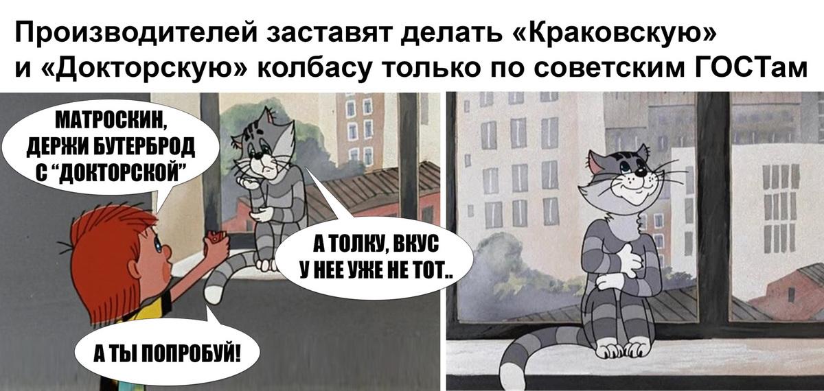 самого картинка кот матроскин правильно говоришь замок стиле