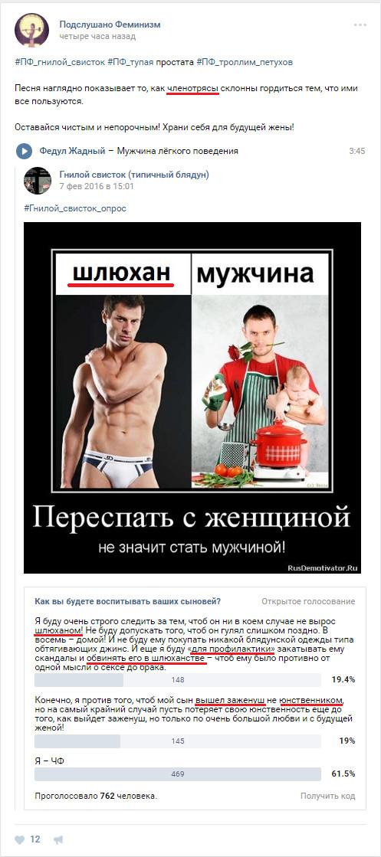 Не только Пикабу познавательный Феминизм, ВКонтакте, Оскорбление, Идиотизм