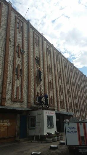 Тольяттинские МЧС-ники спасли стрижа МЧС, 911, герои, птицы, стриж