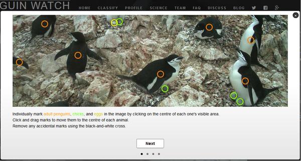 Все считаем пингвинов пингвины, Помощь науке