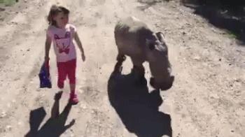 «Мама, папа, можно я его оставлю? Ну пожалуйста»