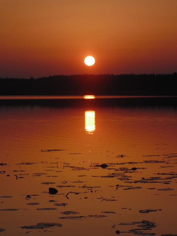Закат закат, Беларусь, озеро, природа, фотография, кувшинка, солнце