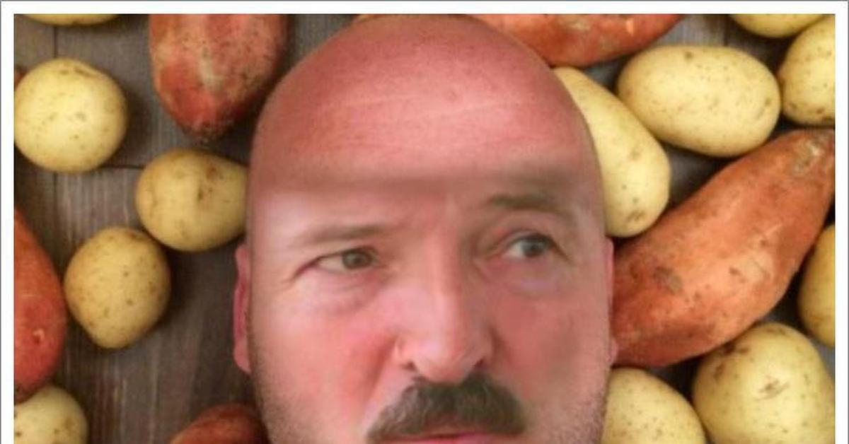 Лукашенко картинка про картошку