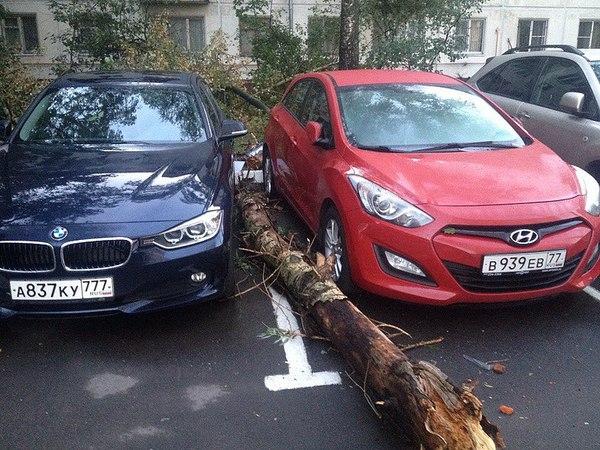 О пользе парковки по разметке!