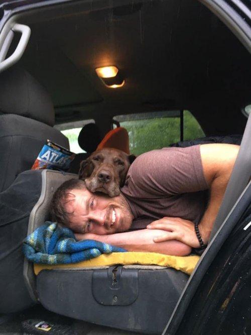 Парень отправился в прощальное путешествие с собакой, у которой диагностировали рак Собака, Рак, Путешествия, Длиннопост