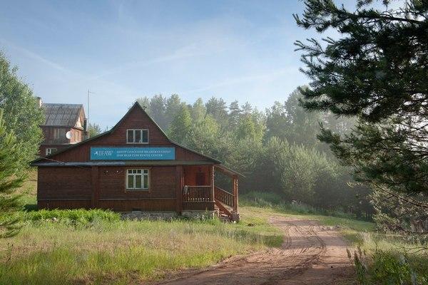 Детский сад, для медвежат Медведь, Помощь, ЭкоСфера, IFAW, Бубоницы, Животные, Длиннопост