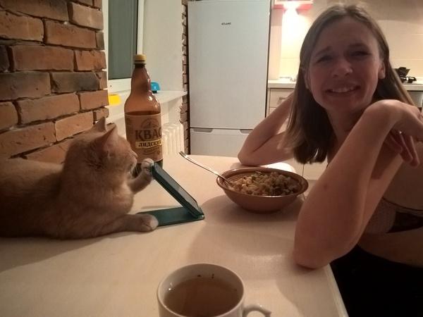 Неудобно кушать и читать? Я помогу Кот, Ужин, Квас, Атлант