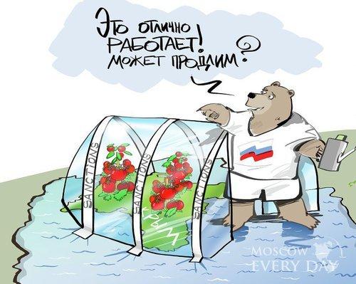 Спасибо, санкции! Россия сегодня сильнее, чем вчера Политика, Россия, Санкции, Экономика, Эмбарго, Запад