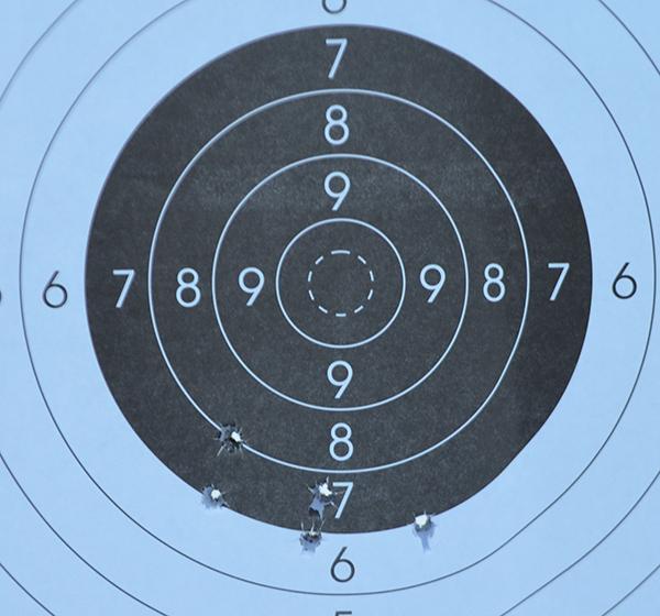 Страсти вокруг самозарядного карабина ВПО-208 Охота, Оружие, Карабин, Впо-208, Длиннопост