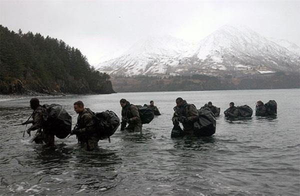Отряды ПДСС и «Дельфин» Пдсс, Спецназ, Диверсанты, Длиннопост, Бойцы