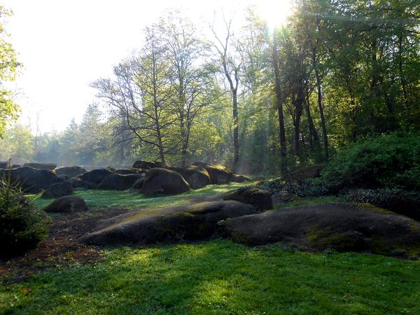 Софиевский парк в Умани Умань Софиевский парк, Природа, Красота природы, Длиннопост